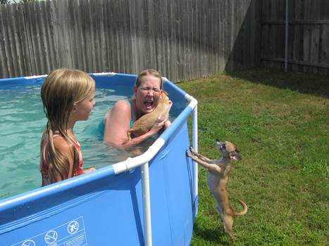 I Don't Wanna Swim!!!