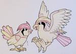 Pidgeotto + Pidgeot