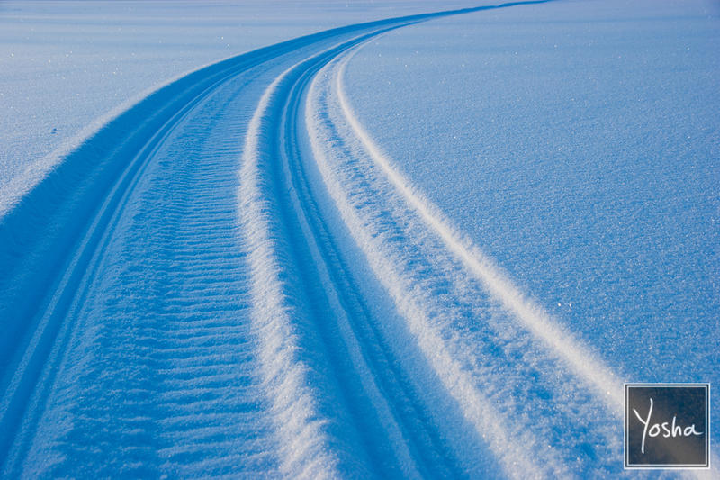 Tracks in snow by YoshaPhotography