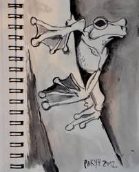 Frog by Rakun94