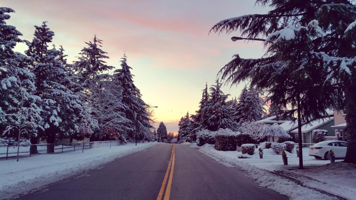 Snow by darrenbarlow