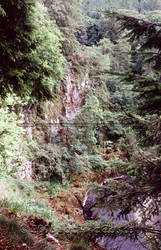 Glen Isla River, 2004 by pwrpufgirlz