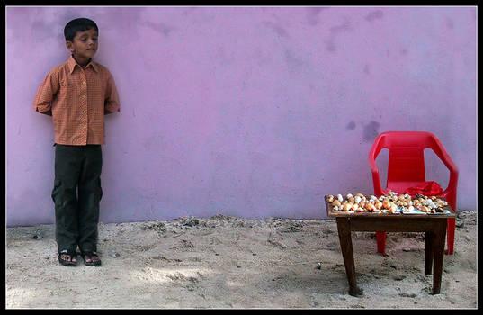 the little shells seller