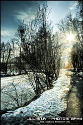 Paysage hivernal. by Zazaka