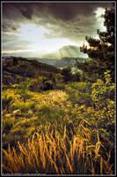 Landscape on october by Zazaka