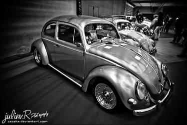 Flamed Beetle by Zazaka