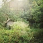 fairy tale garden.