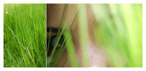 The grass girl. by perfectless