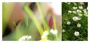The daisy girl.