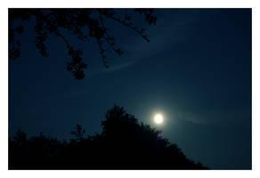 Gute Nacht Geschichten. by perfectless