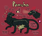 Pumcha Reference Sheet