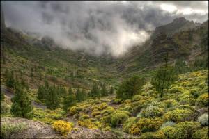 clouded rock