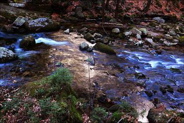 Stream by anachs-photos