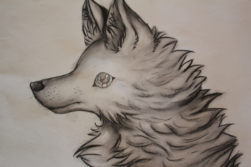 Charcoal Wolf by MoshyahCelestial on DeviantArt
