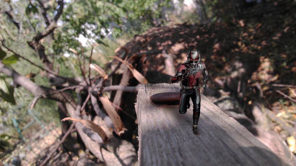 Antman1 by alexsh97