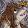 Butterfly Avatar by LadySilvie
