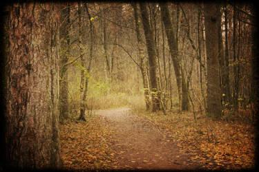 Hidden Path by Kryptisk