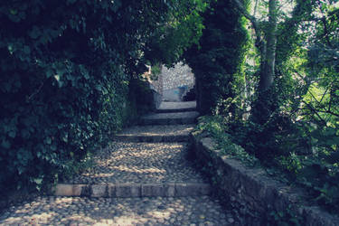 Where does the path lead by Kryptisk