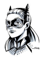 Catwoman from the movie by SachaLefebvre