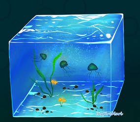 Water Cube with Jellyfish
