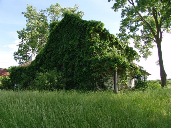 old house by januarystock by januarystock