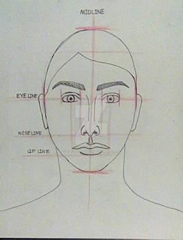 Tutorial - Proportions of Facial Features