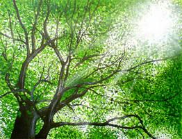 Tree by diana-0421