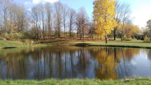 Reflecting Fall by Bestestcat