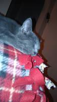 Movie Pillow by Bestestcat