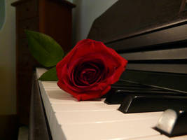 Red Piano. 1 by doglover43