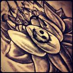 Lotus Flower Bomb By Tonyfcknallen On Deviantart