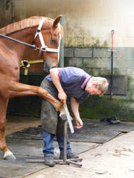 ONeill and the farrier2 by capriool79