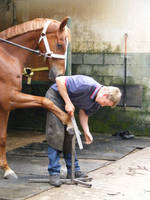 ONeill and the farrier2