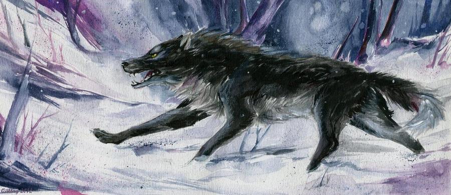 Northern traveler by Skohel