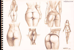 buttocks studies - pencil drawing