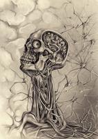 dissection by MrBonecracker
