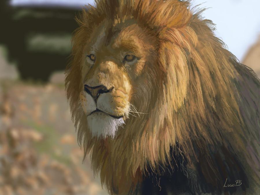 [Image: lion_study_by_lucas_ps-d4w46rj.jpg]