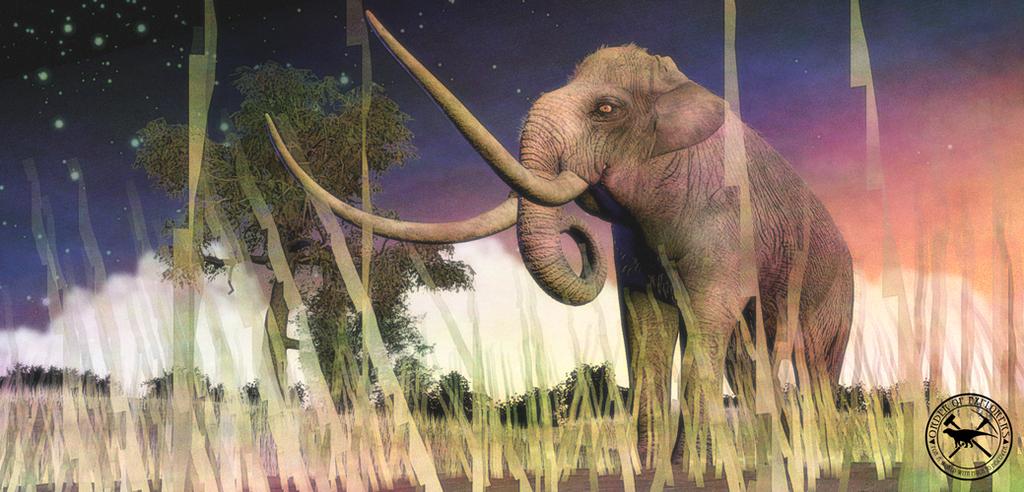 Paleo-Art: Mammoth At Sunset by vcubestudios