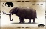 TMHOTW: American Mastodon