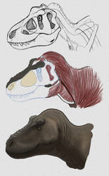 Paleo-Art: T. Rex Head Study by vcubestudios