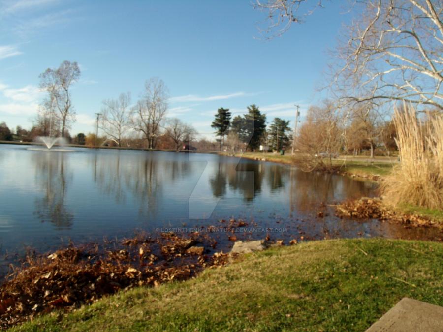 Walk around the pond by lostinthenightnature