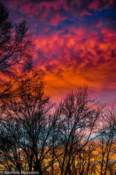 Winter Sky 3 by JasmineMassions