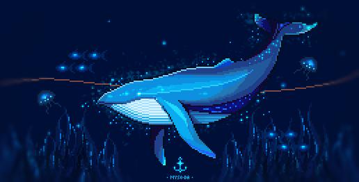 whale by mySo-Da