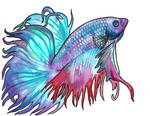 watercolor betta