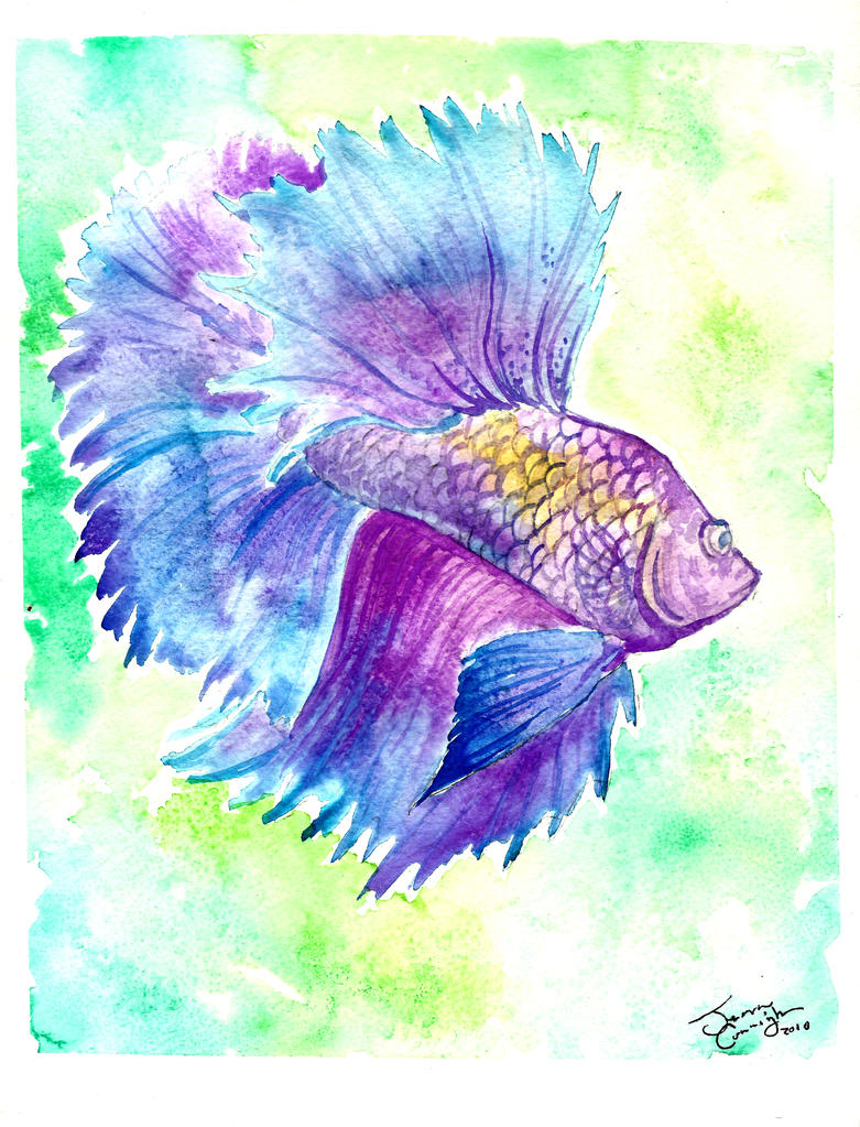 Betta fish watercolor by jupiterjenny on deviantart for Betta fish painting