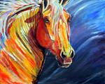 the Belgian stallion