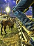 Rodeo shots 1