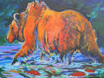 Salmon run grizzly bear