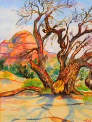 Utah desert tree watercolor