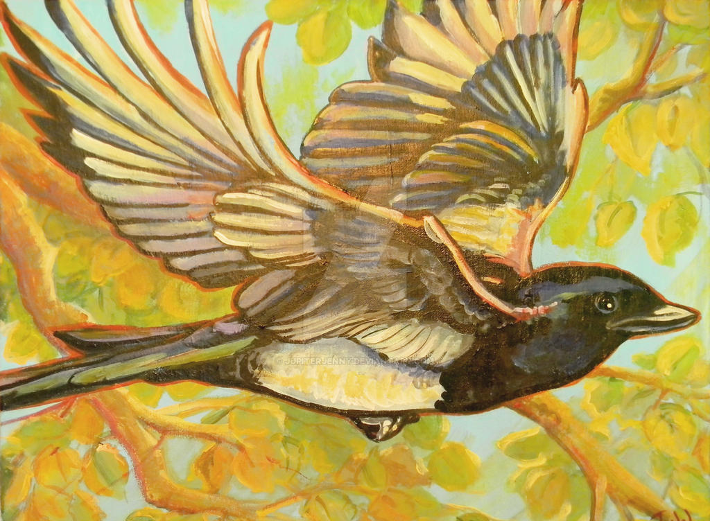 Magpie by jupiterjenny